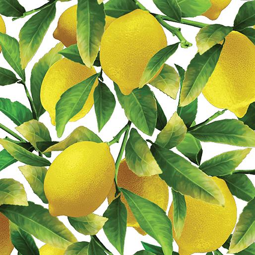 lemon-print-fabric-bernatex-fabric.jpg